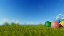 Easter eggs on green meadow over blue blurry sky, panning Animation