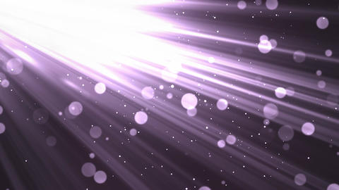 Bokeh Morning Rays Purple Animation