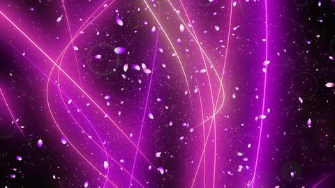Confetti circle sakura line v origin noflare Animation