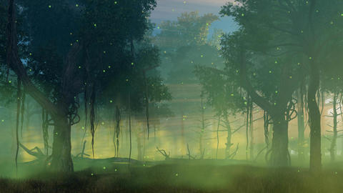 Firefly lights in misty night forest cinemagraph Animation