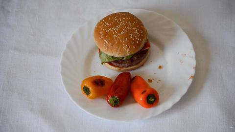 Burger on Plate Footage