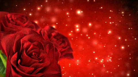 rotating red roses with bokeh particles - 3D render. seamless loop Animation