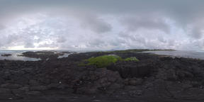 360 VR Ocean view from black volcanic rocks, Mauritius Filmmaterial