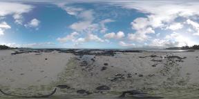 360 VR Ocean coast of Mauritius Island Footage