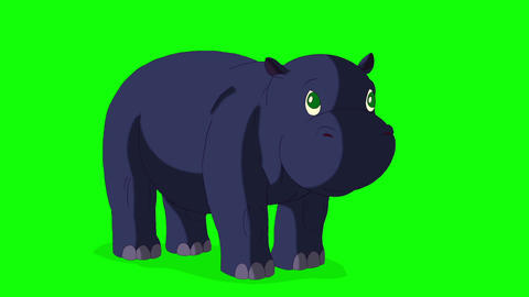 Little Blue Hippo Wakes Up and Open His Mouth Animation