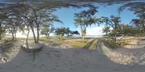 360 VR Mauritius coast with trees in bright sunlight Archivo