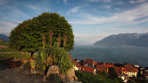 Vineyards of the Lavaux region over lake Leman ビデオ