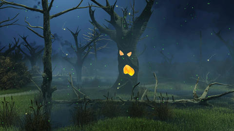 Fantastic spooky tree at night swamp cinemagraph Animation