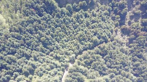 DJI MAVIC 4K Taiwan Nantou Aerial Drone Video Yushan National Park Lulin Mountai Footage