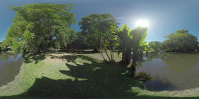 360 VR Green Mauritius park with pond on sunny day Filmmaterial