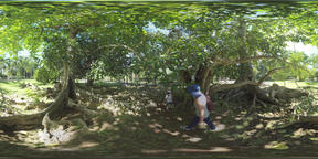 360 VR Green park with walking people, Mauritius Filmmaterial