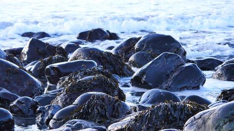 Black rounded stones in Talisker bay on west coast of the Isle of Skye in Scotla Footage
