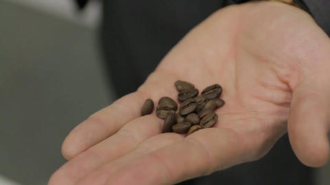 Grains of Coffee on the Palm Footage