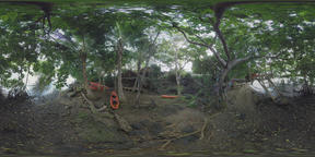 360 VR River bank with hut and boats among the trees, Mauritius ビデオ