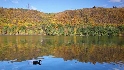 Autumn reflection on the Vltava river Footage