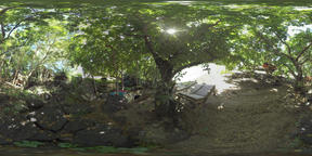 360 VR Green relaxing area and family having rest, Mauritius ビデオ