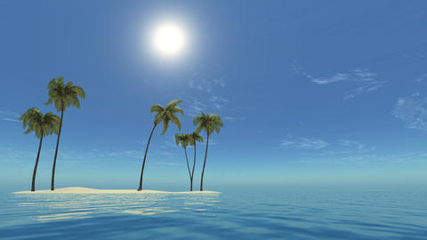 3d,Palm tree leaves over luxury beach Animation