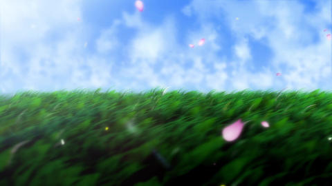 grass field Animation