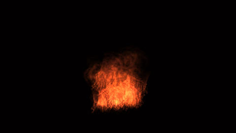 Flame of Fire animation with alpha channel Animation