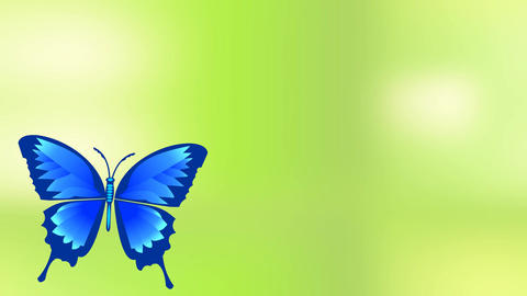 Flying blue butterfly sits on a flower blooming, animated spring or summer video Animation