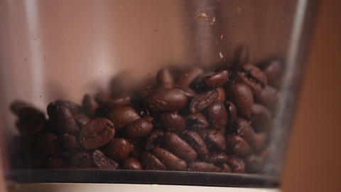 Coffee beans coffee grinder Live Action