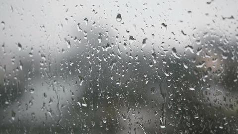 Rain on Window GIF