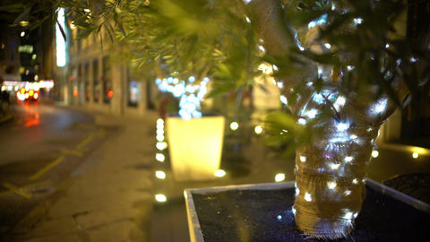 Illuminated decoration hanging on trees on the street, people walking, holidays Footage