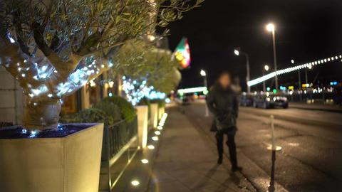 Decorated trees in containers along sidewalk, illumination, winter holidays Footage