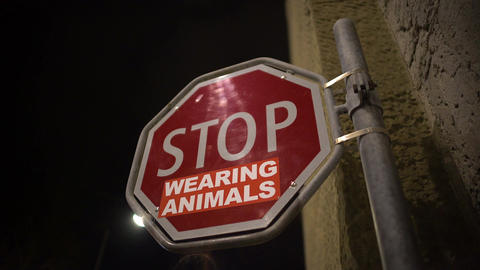Stop wearing animals red sign on street, animal protection campaign, message Footage