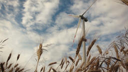 Slow motion slide over wheat with wind turbines Footage