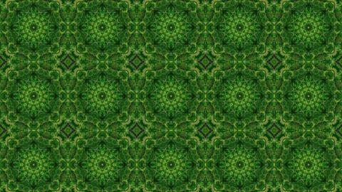 20 green tree Animation