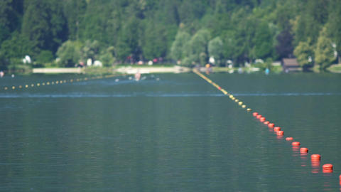 People sitting in boats and rowing, view on water sports competition, slow-mo Footage