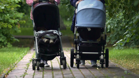 Mothers walking in park with babies in strollers, maternity pay, parenthood Footage
