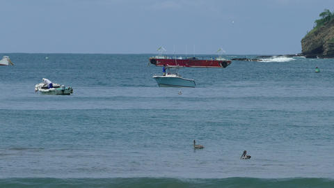 Speedboat and pelicans in Pacific ocean Footage