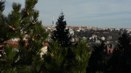 PRAGUE, CZECH REPUBLIC - MARCH 2014: Panorama of Prague with tree Footage