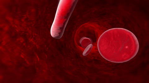 Blood cell (veins, arteries, capillaries). 3D animation