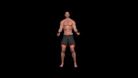 Martial Art Combo - 01 - Asian Fighter - Alpha Channel Animation
