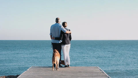 Retired Senior Couple standing on jetty on beach with dogs Footage