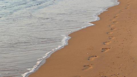 Footprints on sand beach along the edge of sea Footage