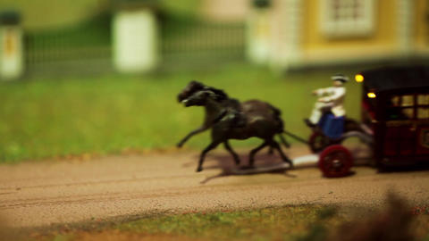 Miniature horse-drawn carriage rides Filmmaterial