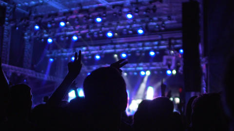 Silhouettes of happy people enjoying music at concert, waving hands in air Footage