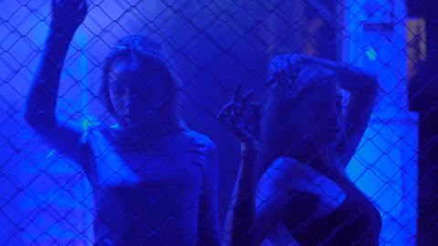 Pretty female go-go dancers moving to music in trance at nightclub, illumination Footage