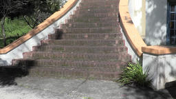 Stairs in front of old building Footage