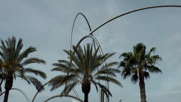 Spain Barcelona 005 Bows and palm trees at waterfront promenade Footage