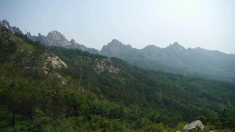 Panoramic of Mountains & hill,wind shaking pine Stock Video Footage