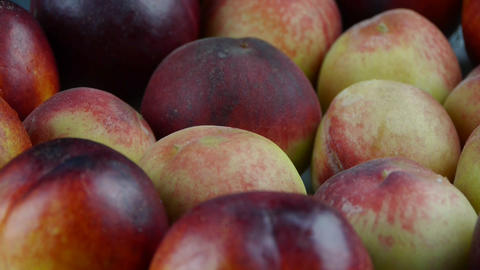 Fresh delicious peaches & nectarines Stock Video Footage