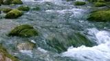 mountain rivers of the Crimea Footage