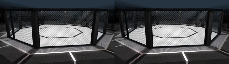 Octagon Arena Loop -3D Stereo Stock Video Footage