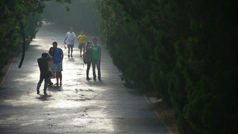Tourists in photography.Visitors walk under shade of... Stock Video Footage
