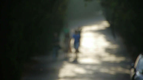 Nominal figure.Visitors walk under the shade of trees,walking on road.memories,h Footage